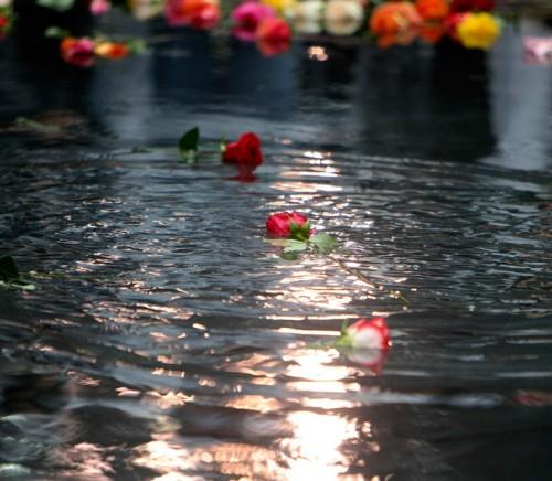 9-11-flowers