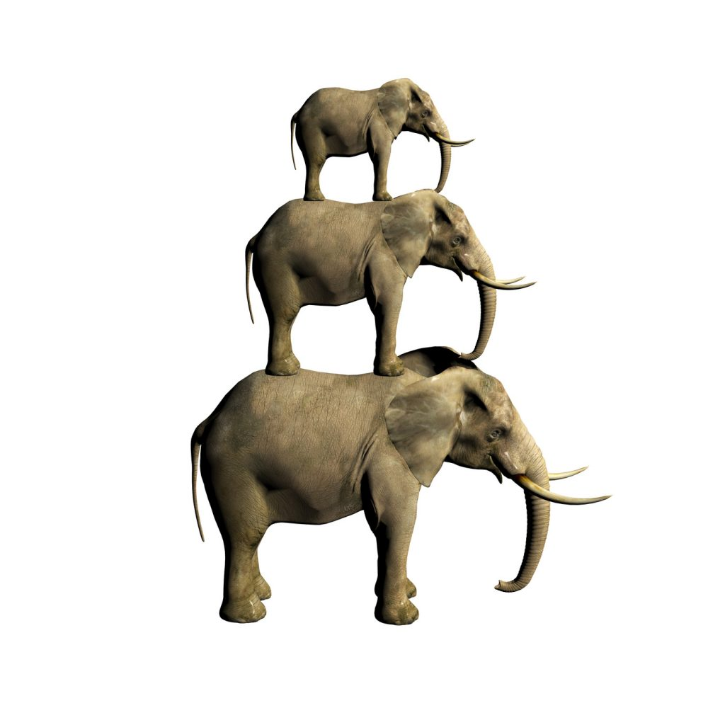 3d elephant isolated on white