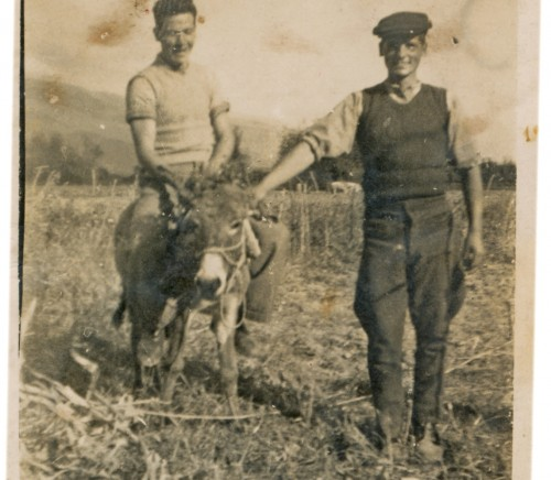 CIRCA 1940: Two young farmers posing on a cornfield