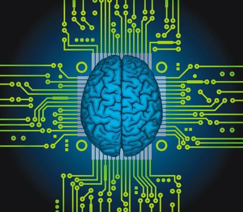 Human brain as computer central processor.