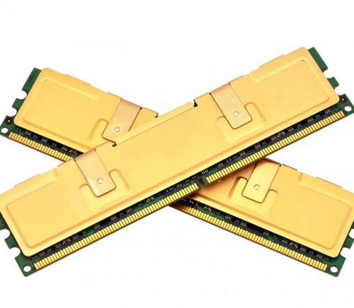 two gold ram on a white background